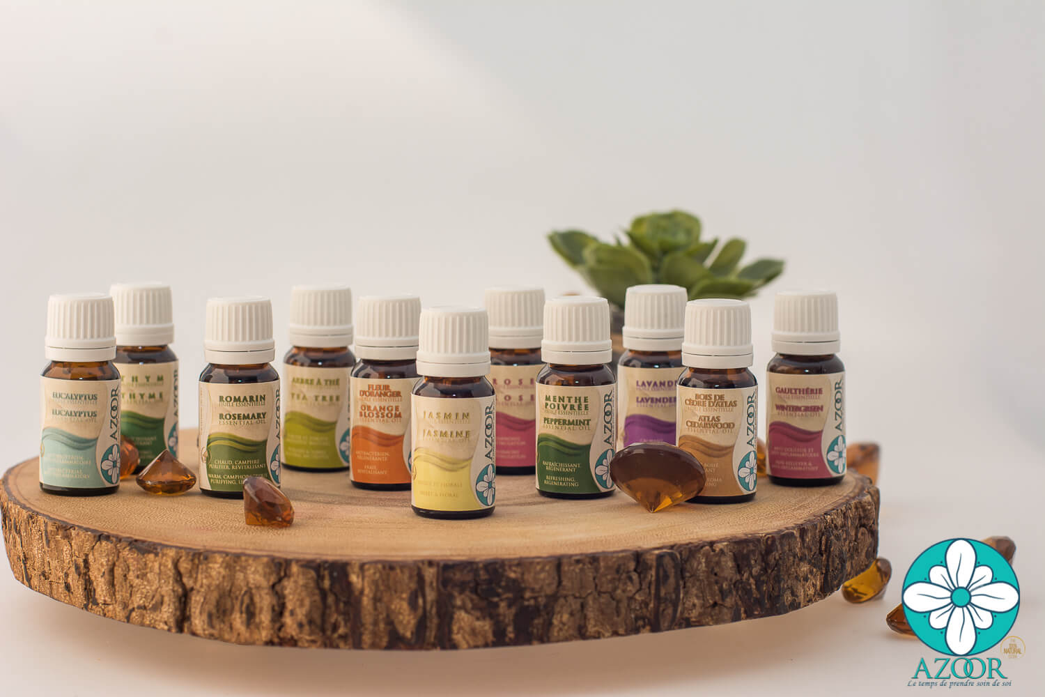 Compose your Essential Oils & Aromatherapy Pack
